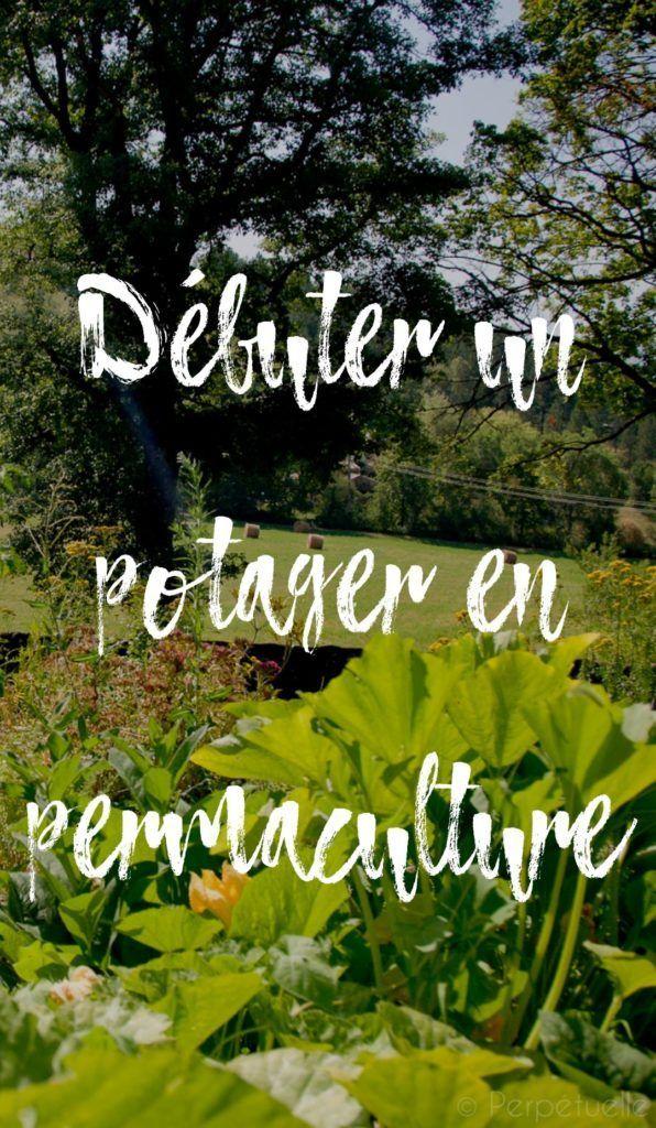 Permaculture debutant permaculture debutant