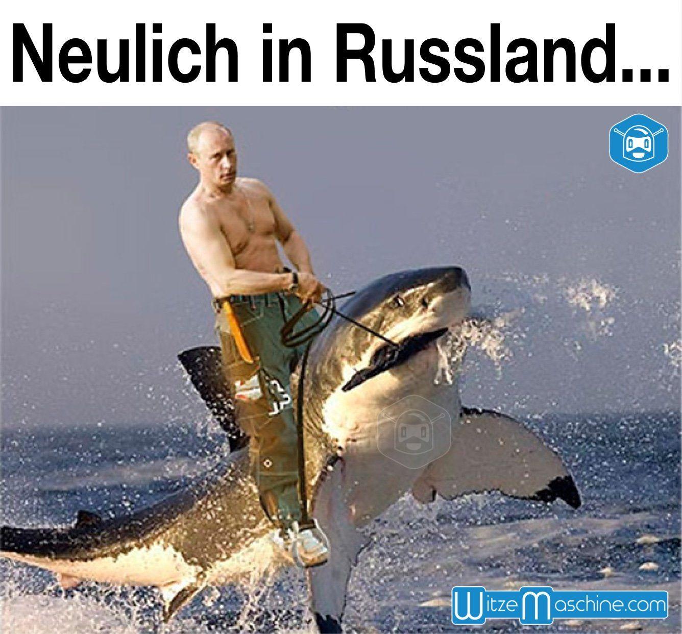 Wie Putin In Russland Einen Hai Reitet Funny Russian Fail Lustige Humor Bilder Putin Lustig Witze Lustig