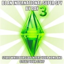 Sims - Be an International Super Spy by day stare while burglar enters your home and steals your stuff