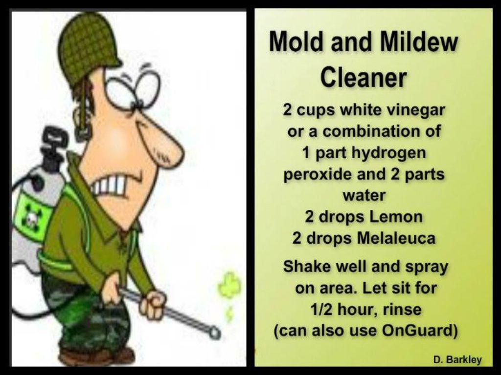 Mold and mildew cleaner. Mold and mildew cleaner   doTERRA Essential Oils   Pinterest