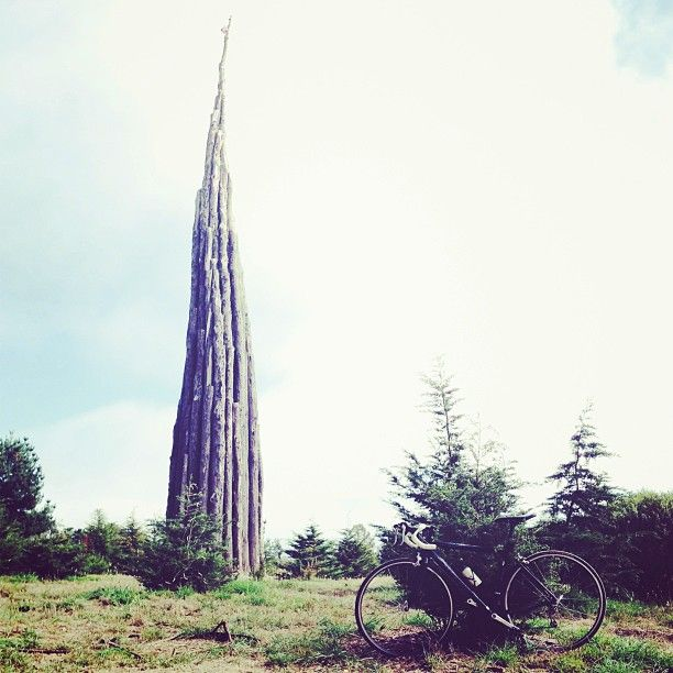 The Spire: Andy Goldsworthy sculpture in the presidio