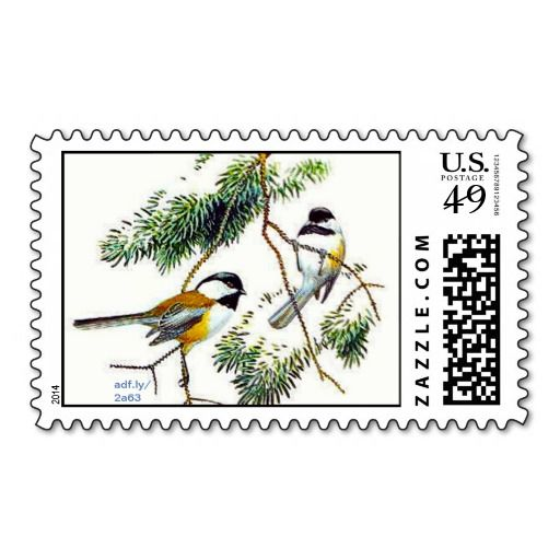 >>>Best          	Chickadee U.S. Postage Stamps           	Chickadee U.S. Postage Stamps This site is will advise you where to buyHow to          	Chickadee U.S. Postage Stamps Online Secure Check out Quick and Easy...Cleck Hot Deals >>> http://www.zazzle.com/chickadee_u_s_postage_stamps-172868083917695207?rf=238627982471231924&zbar=1&tc=terrest