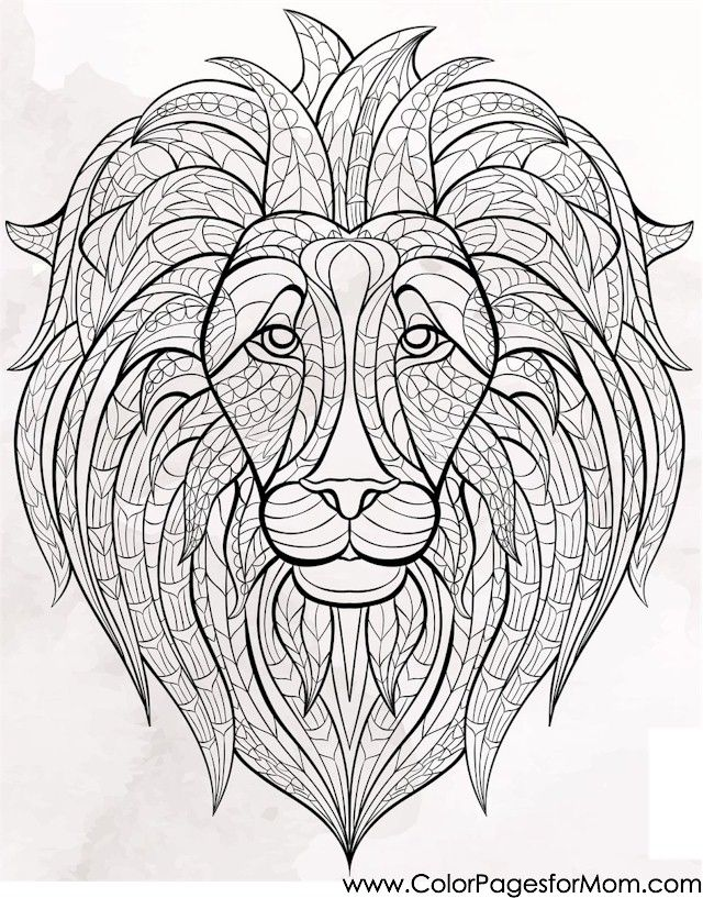 Animal Coloring Page Lion Colorpagesforadults