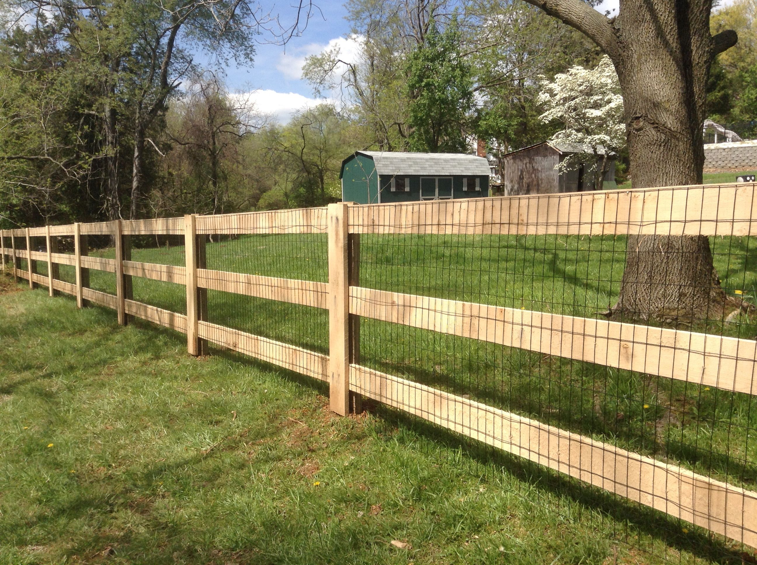 Paddock Horse Board Pasture Fence Designs Fence Posts Are Made Of Treated Pine Fence Boards Are Made Of Oak Ideal Bamboo Fence Fence Design Backyard Fences