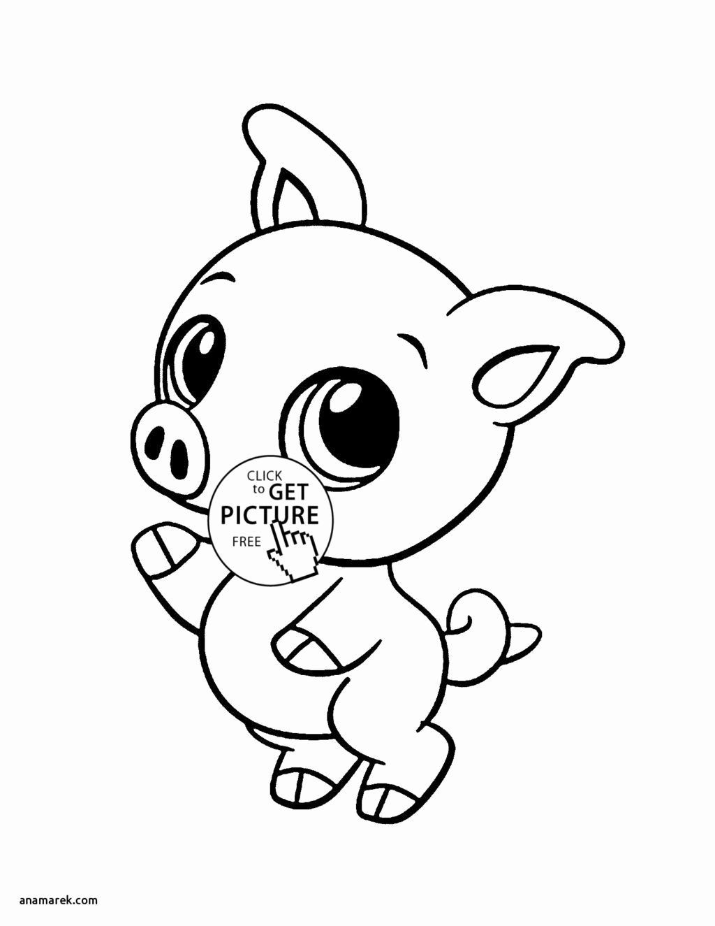 Coloring Book Zoo Animals In 2020 (With Images) Farm Animal