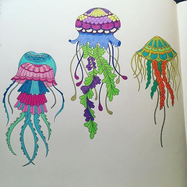 The Double Page Jellyfish Spread From Lostocean