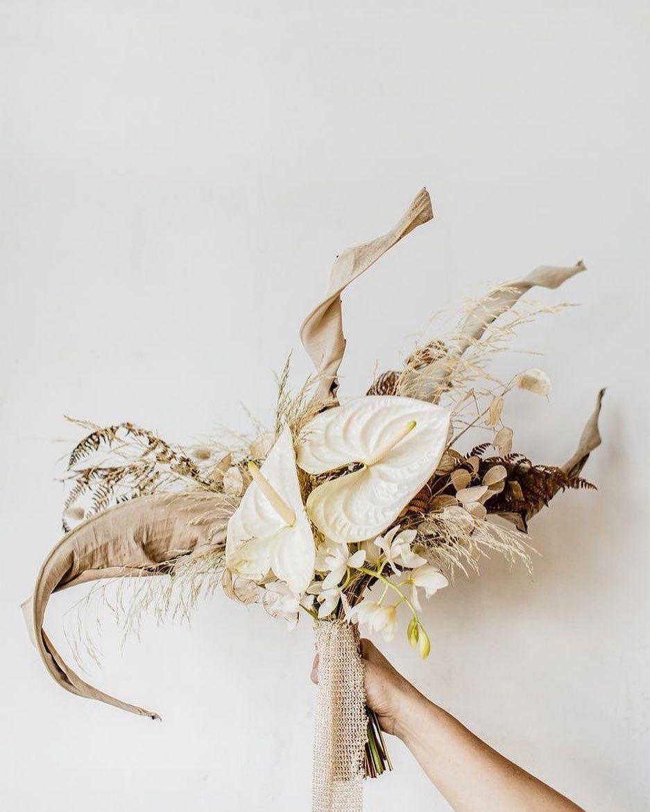 Anthurien- Symbol exotischer Schönheit. Die farbig, herzförmigen Blüten sind ein echter Blickfang und erleben diese Saison ein echtes Revue! . . Foto: @thelane