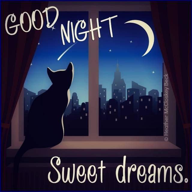 Charming Explore Good Night Moon, Good Night Sweet Dreams And More!