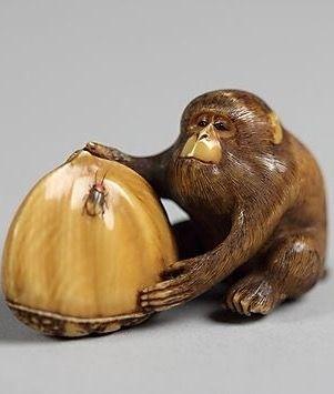 Netsuke of Monkey with a Chestnut. 19th century. Japan. Ivory.