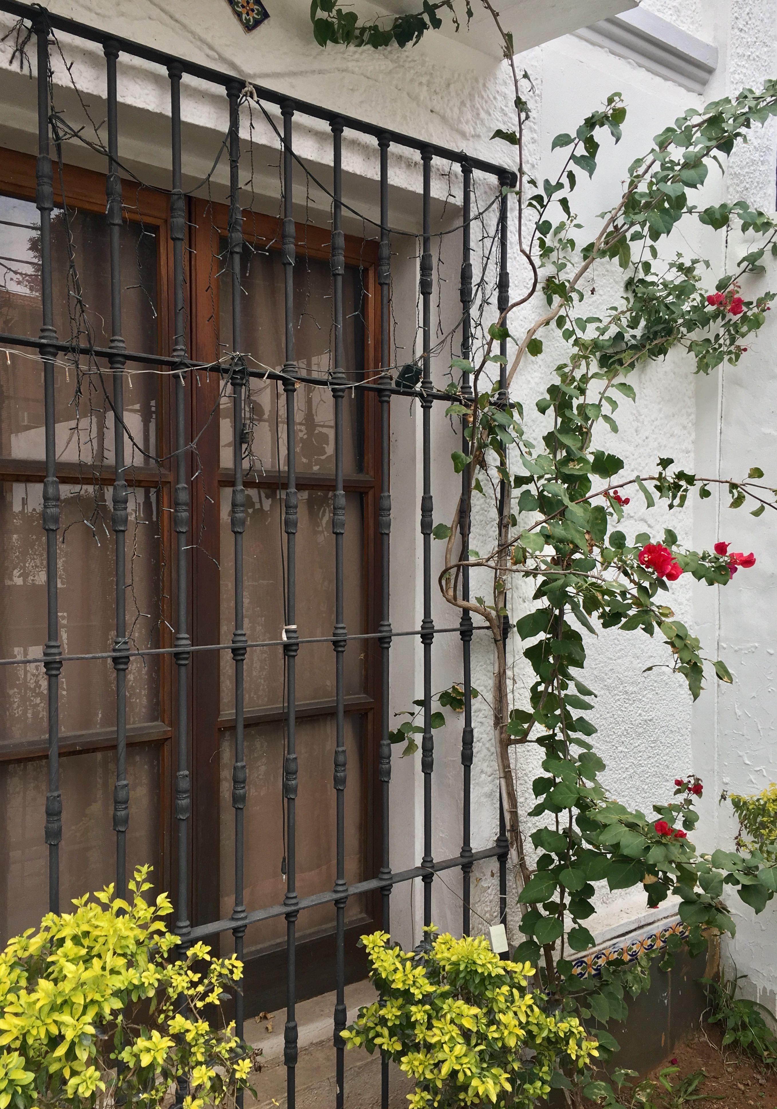 Ventana Con Flores De Asuncion Paraguay South America Outdoor Structures Outdoor