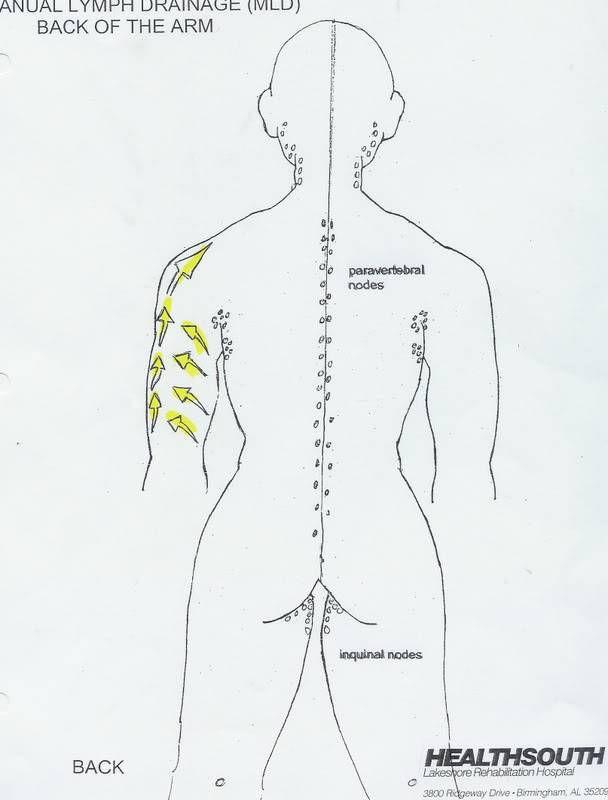 Manual Lymph Drainage (MLD) Arm Illustrated Patterns