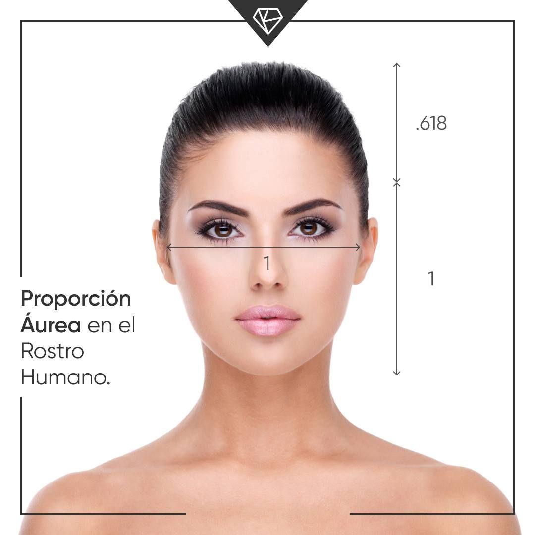 Tienes El Rostro Ovalado O La Cara Ovalada Chibichai En 2020 Morfologia Del Rostro Forma De Rostro Sombras De Ojos