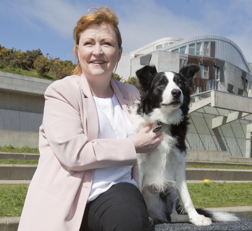 Scotland Crowns Top Parliamentary Dog Dogs Collie Dogs The