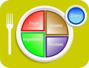comida equilibrada y completa