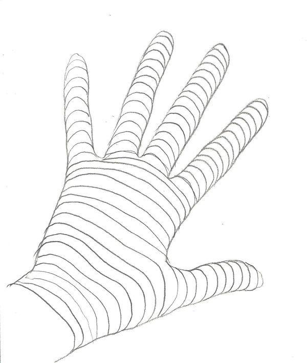 Graphite Drawing Techniques: Contour Drawing | Contour line, The ...