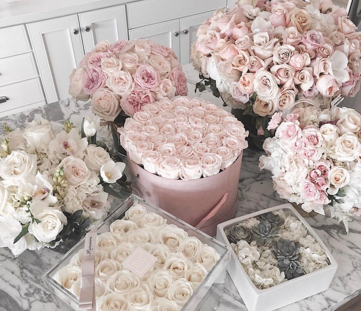 Pin by Cecily Ojeda on Florals Luxury flowers, Bloom