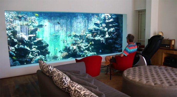 Eli's 10,000 gallon reef aquarium