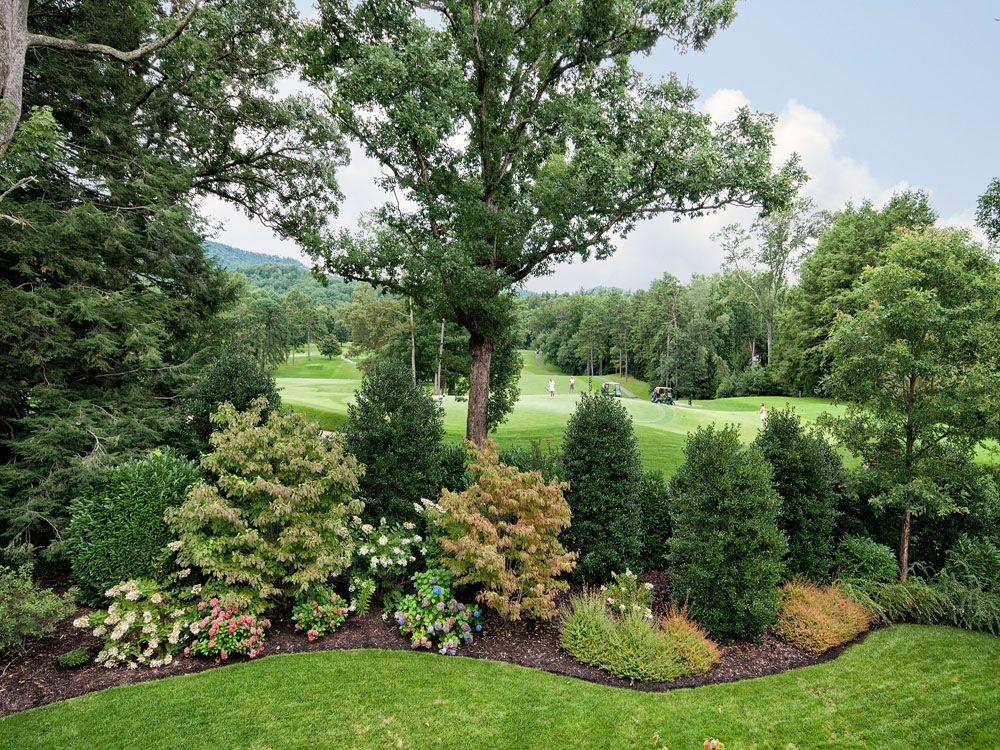 24 Browntown Road In Asheville North Carolina 28803 Mls 548005 Privacy Landscaping Landscape Design Backyard Trees