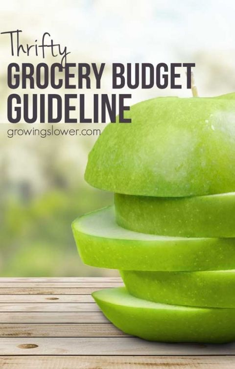 Do You Feel Like Youre Spending Way Too Much On Groceries Chart Of