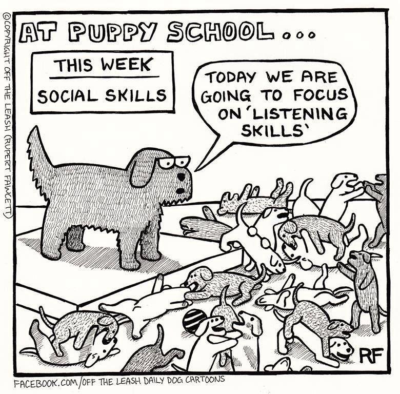 At Puppy School Puppy School Training Your Puppy Listening Skills