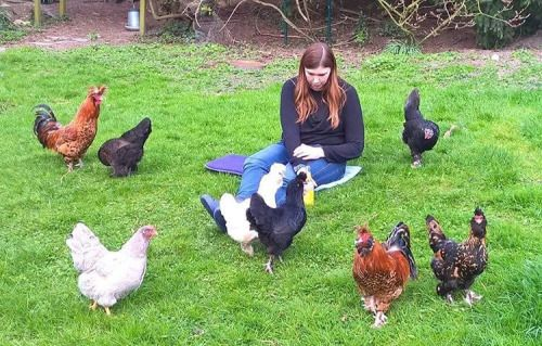 Me and all my chickens back in the spring 😊 #chickensofinstagram…