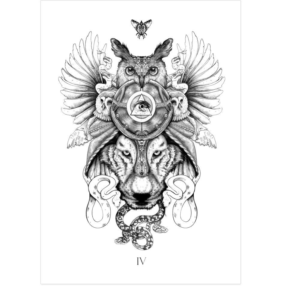 The tattoo coloring book megamunden - Fly Owls Wolf And Snakes Tattoo Inspirational Illustration