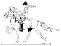 Lena Furberg Horses Islandshest Iceland Horse Horse Drawings Horse Coloring Pages Animal Drawings
