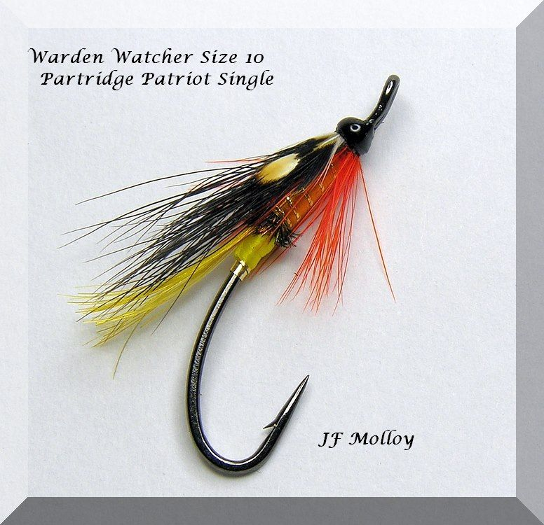 Warden Watcher | Fly tying patterns, Salmon flies ...