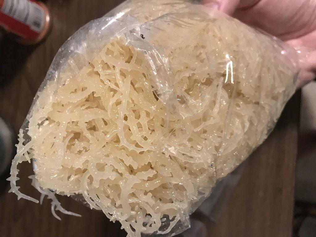 Quick* How to Make Sea Moss Gel Irish Moss Seaweed Jelly