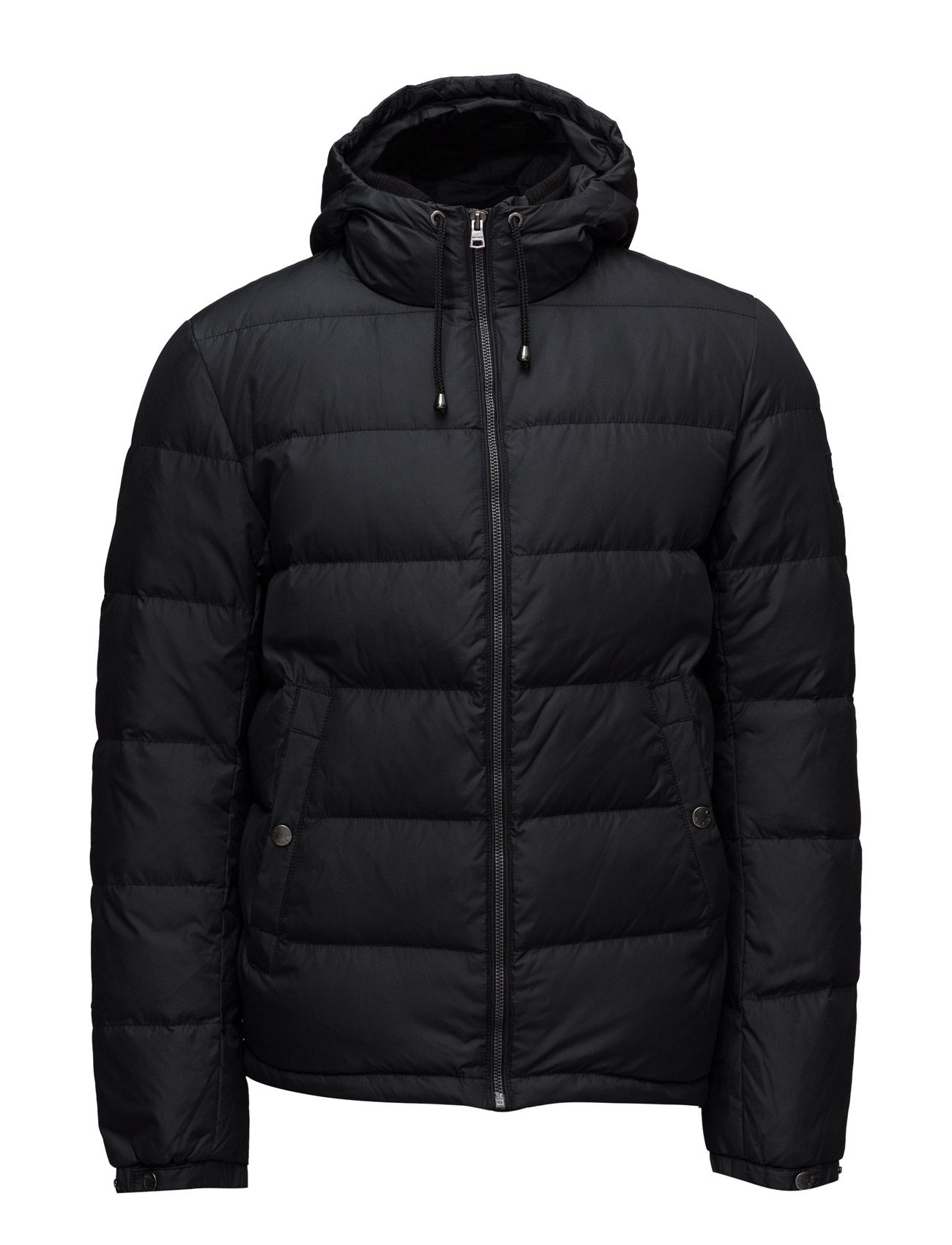 Tommy Hilfiger DUSTY HDD DOWN BOMBER