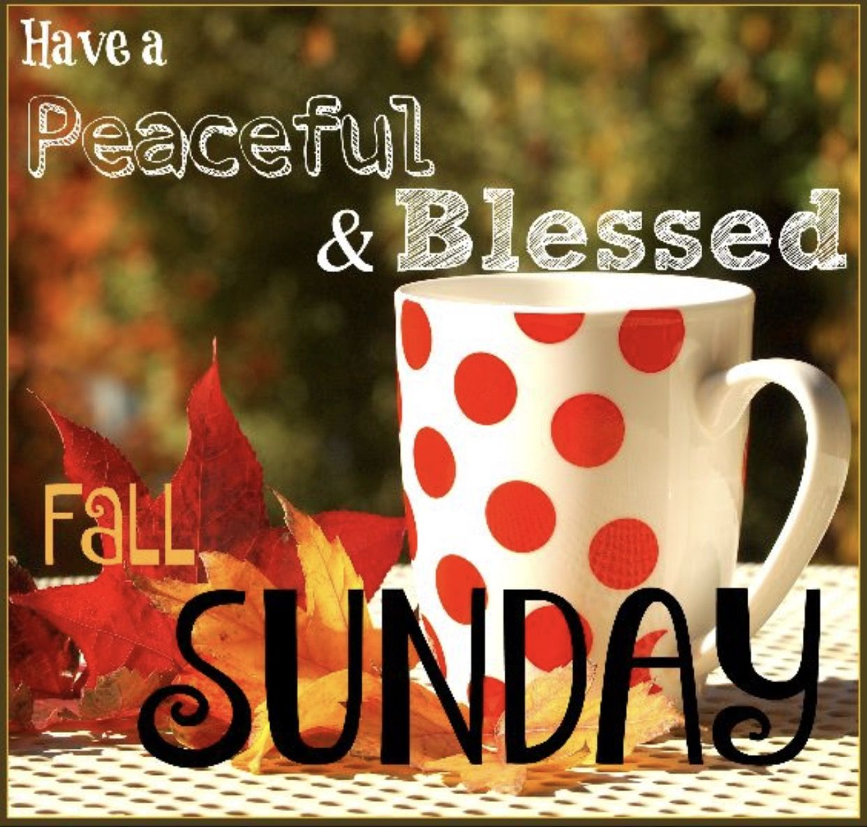 Have a blessed week fall