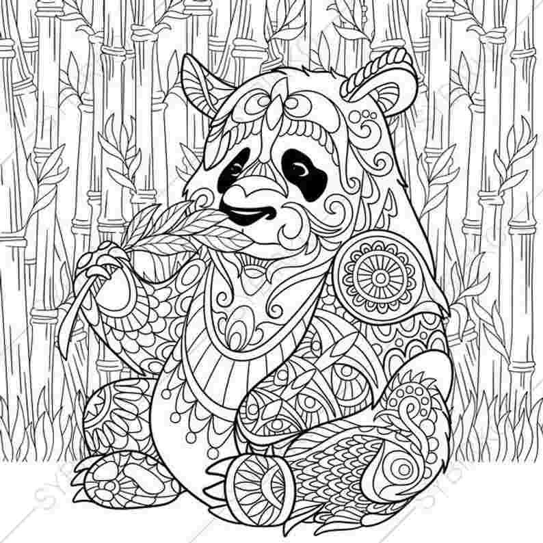 Coloring Festival Coloring Pages Of Panda Bears More Than 48