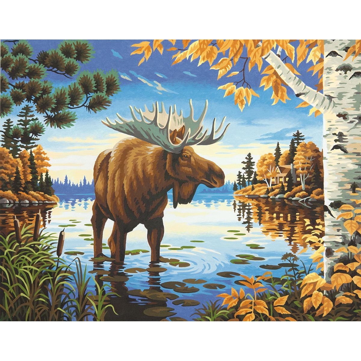 Dimensions Paint By Number Kit 11inX14in-Majestic Moose