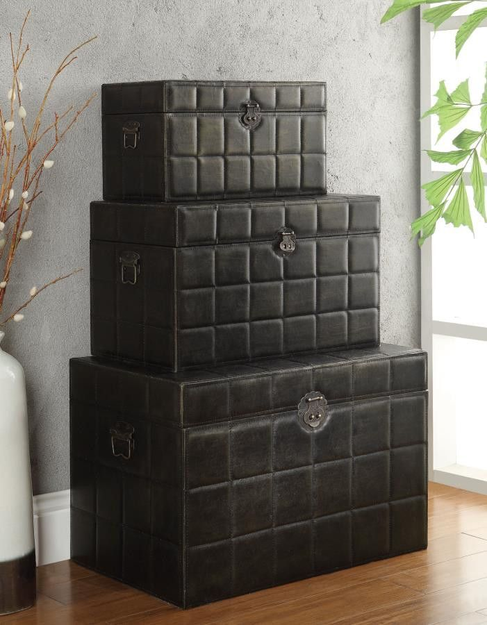 Large Leather-like Storage Trunks