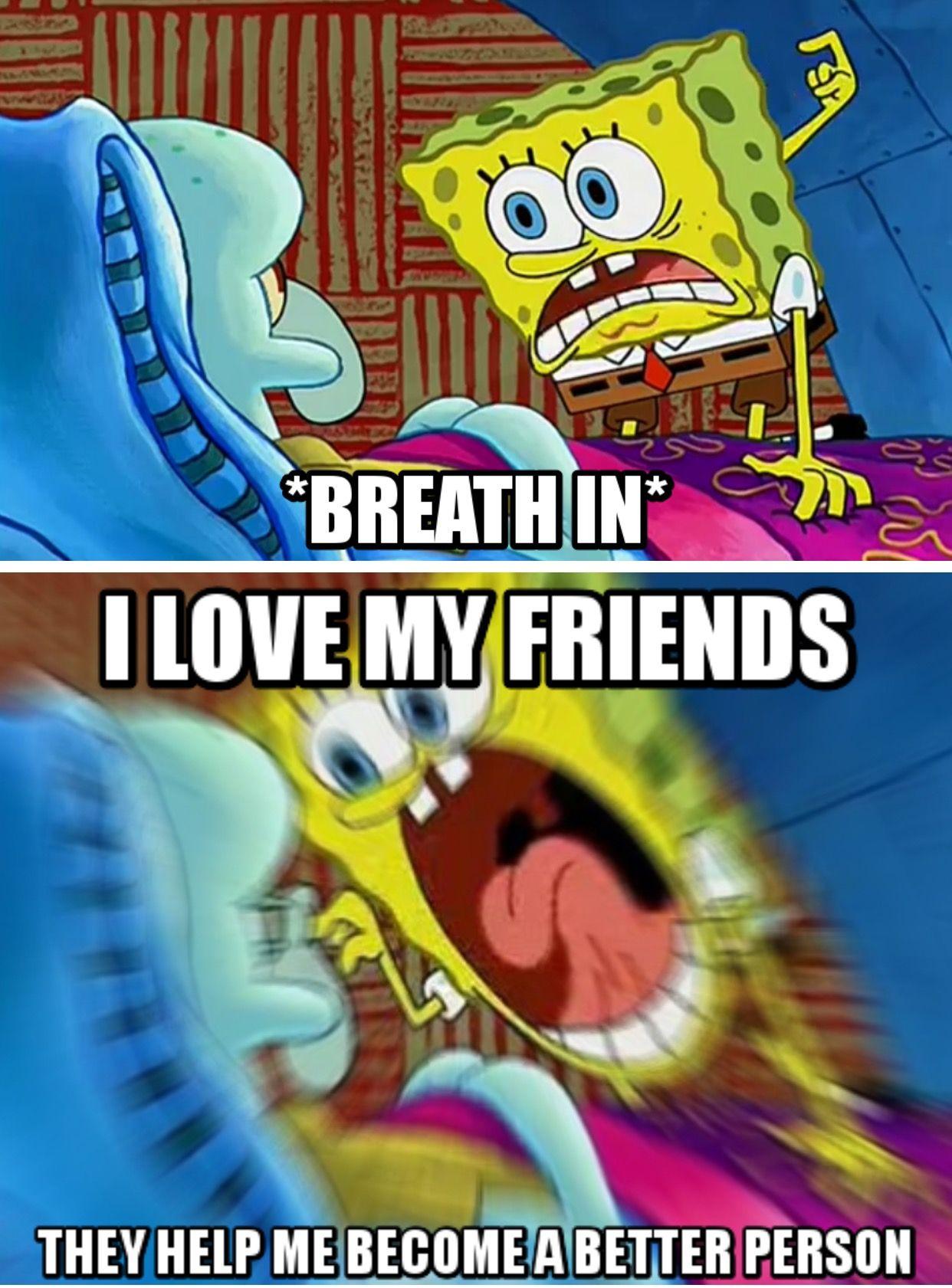 I Love My Friends Meme : friends, Friends,, Wholesome, Memes,, Memes
