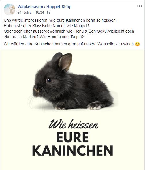 Namen Für Kaninchen Pärchen