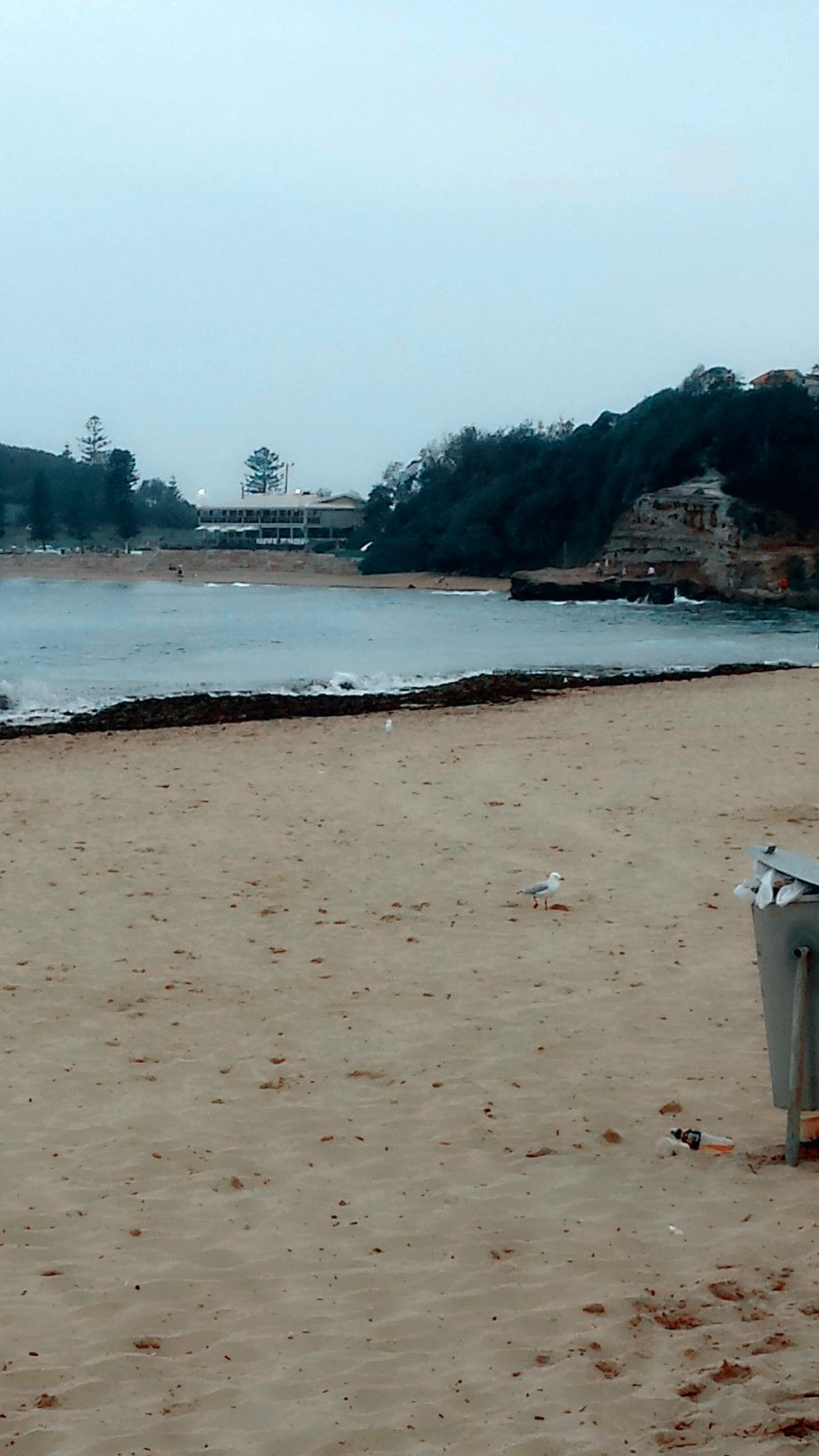 Terrigal;Central Coast NSW.... (With images) Outdoor