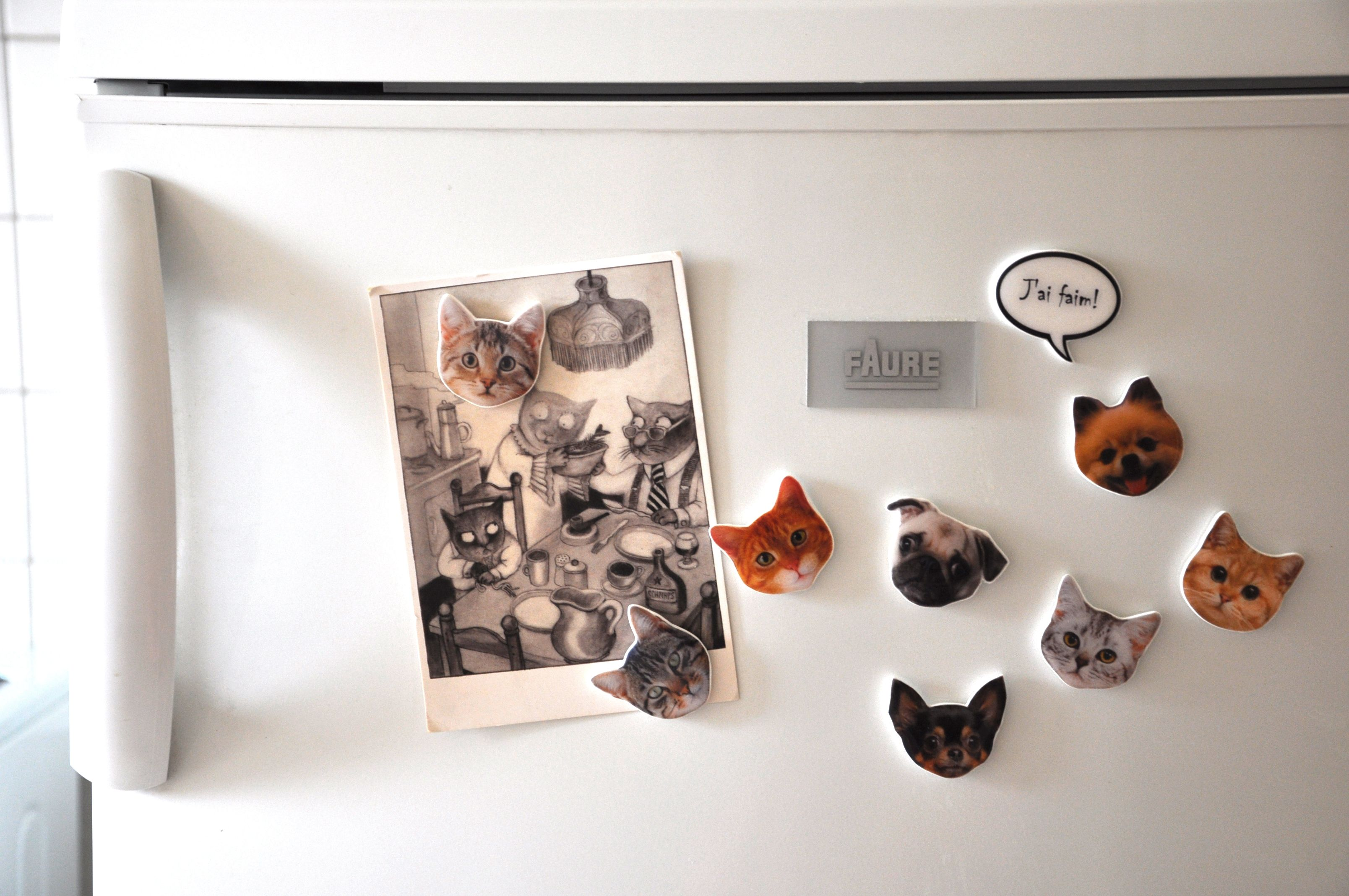 Cute Cat and Dog fridge magnets to remind you to feed your four-legged bellies…