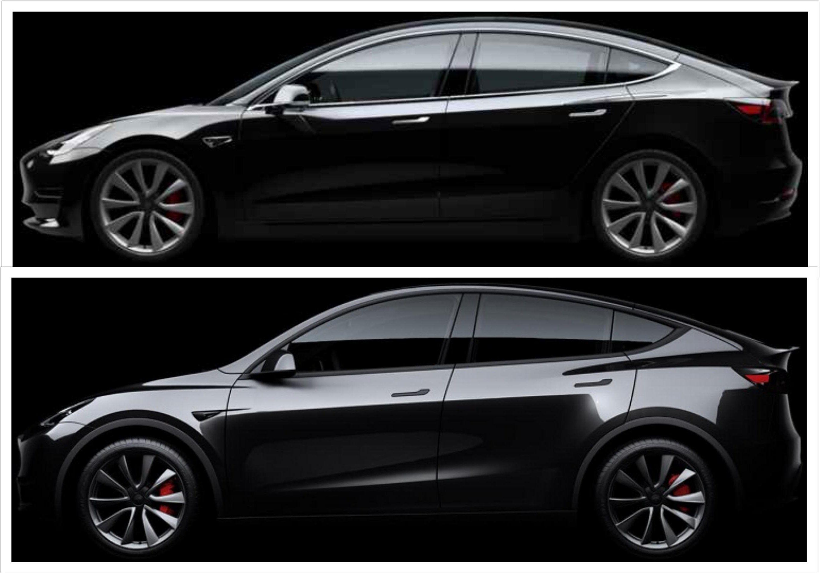 Tesla Model Y And Model 3 Visual Comparison Side By Side Morphing More Tesla Model Tesla Tesla Car