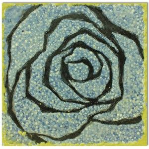 Rose on a grey background.