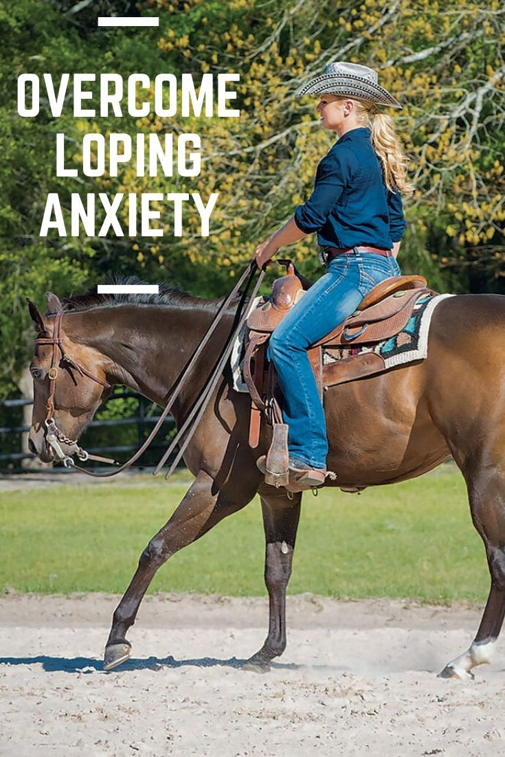 Lope 'Out Loud' #horsepattern