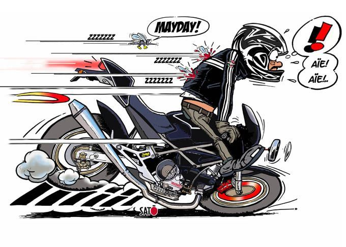 Ducati monster joe bar team joe bar team pinterest - Dessin humour moto ...
