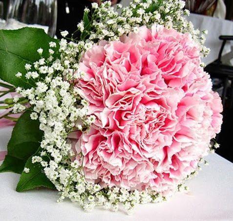 Bunga Baby Breath Untuk Nyatakan Cinta Sejati Bunga Pengantin Cinta Sejati