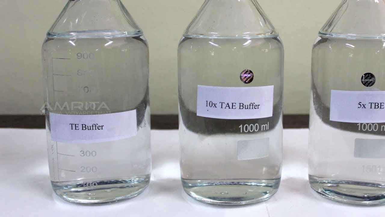 Preparation of Buffer stocks (TBE. TE and TAE) - Amrita University | Buffer. Bottle. Preparation