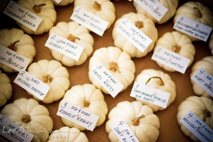 small white pumpkins for wedding table assignments