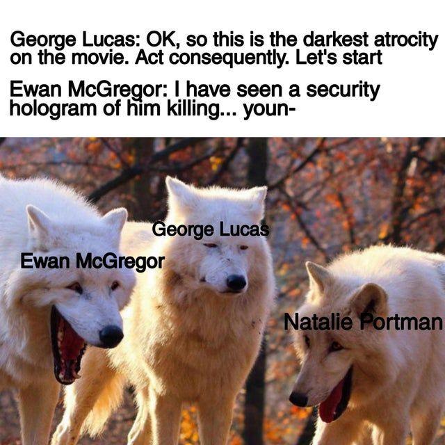 And R Prequelmemes Hopefully Prequelmemes In 2020 Star Wars Fandom Star Wars Memes Funny Star Wars Memes