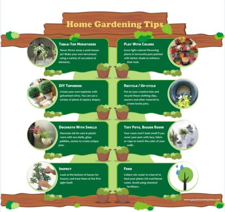 Garden Decor   My Garden