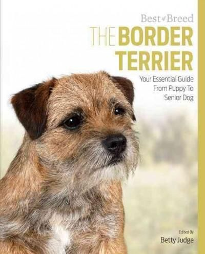 The Border Terrier Is One Of The Most Popular Breeds Of Dog And