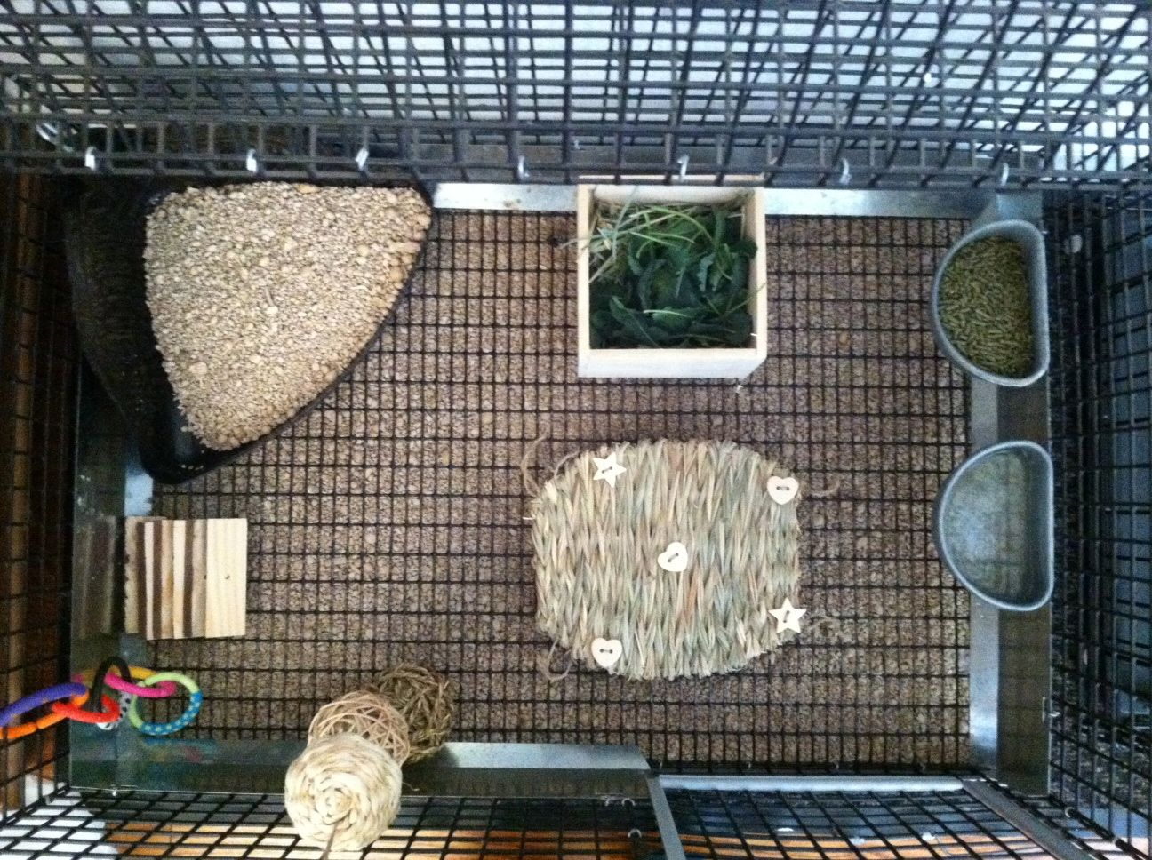 bunny cage setup litter box veggie 39 s wood sticks