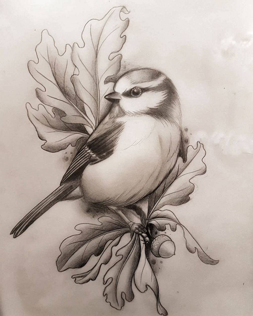 Pin By Aurea Reyes On Art Sketches In 2020 Art Drawings Sketches Simple Art Drawings Sketches Creative Animal Drawings Sketches